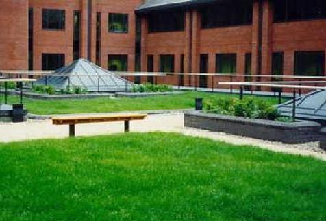 Realizzazione giardini pensili - Milano - Monza-Brianza - La progettazione de...